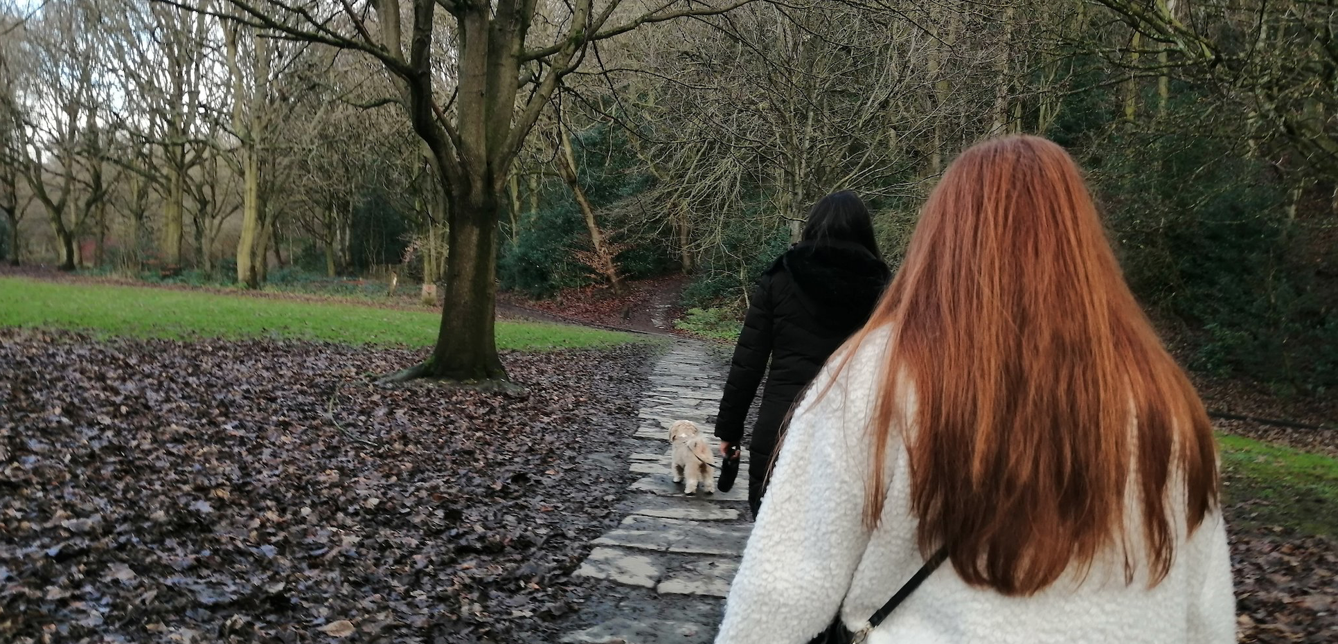 Showing the back of two ladies walking on a path through a park. The lady in front is walking a small dog.